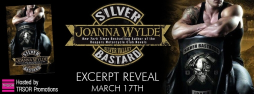 silver bastard excerpt reveal